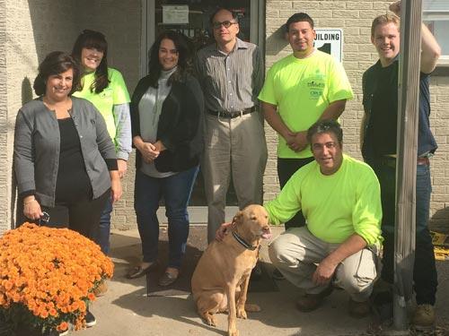The team at Terrific Environmental